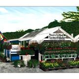 farmstand #9:  nurel's farmers market