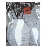 red flower white flowerpot