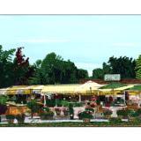 farmstand #10:  hayground market